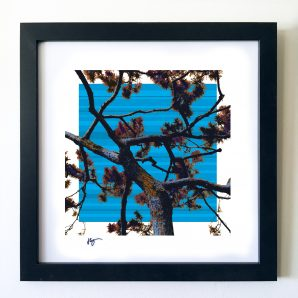 #OF1601 Blue Sky 16x16 Frame